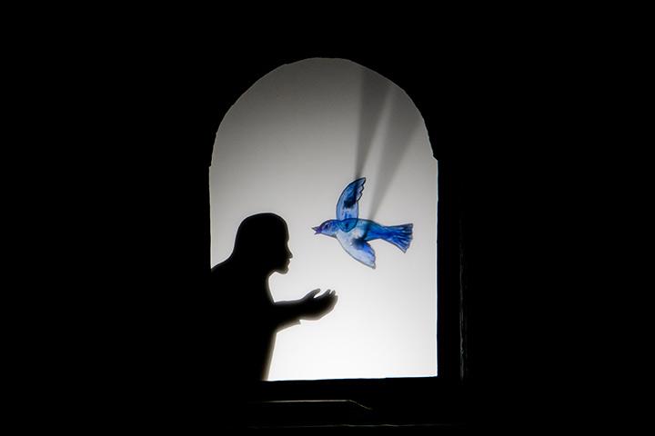 театр теней, спектакль для детей, Минск, Беларусь, Швеция, Сара Лундберг, для подростка, Я Фест